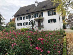Institutul Jung grădina
